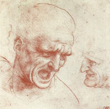 Leonardo da Vinci (Two heads) Art Poster Print Masterprint