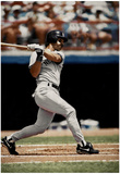 Don Mattingly New York Yankees Archival Photo Sports Poster Print Prints