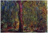 Claude Monet Weeping Willow Art Print Poster Prints