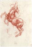 Leonardo da Vinci (Study of a rebel horse) Art Poster Print Posters