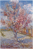 Vincent Van Gogh (Souvenir de Mauve) Art Poster Print Poster