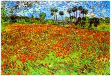 Vincent Van Gogh Poppy Fields Art Print Poster Prints