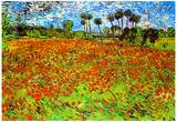 Vincent Van Gogh Poppy Fields Art Print Poster Láminas