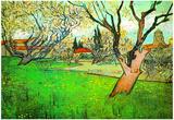 Vincent Van Gogh View of Arles with Flowering Tree Art Print Poster Posters