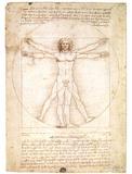 Vitruvian Man 1492 Leonardo da Vinci Davinci art POSTER Masterprint