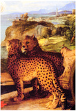 Titian Bacchus and Ariadne Detail Art Print Poster Print