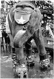 Roller Skating Elephant Archival Photo Poster - Poster