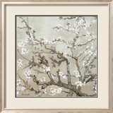 Almendro con flores, San Remy (Almond Branches in Bloom, San Remy, ca. 1890 (ocre)) Psters por Vincent van Gogh