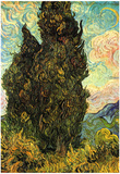 Vincent Van Gogh (Cypresses) Art Poster Print Print