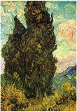 Vincent Van Gogh (Cypresses) Art Poster Print Print