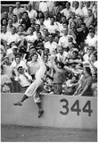 Vintage Baseball Action Catch in Stands Archival Sports Photo Poster Posters