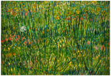 Vincent Van Gogh Patch of Grass Art Print Poster Prints
