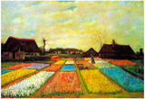 Vincent Van Gogh Holland Flower Bed Art Print Poster Plakat