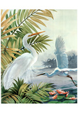 Two Egrets (Animals) Art Print Poster Posters