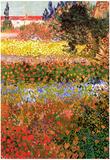 Vincent Van Gogh Flowering Garden Art Print Poster Reprodukcje