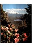 Mountain (Lake) Photo Print Poster Poster