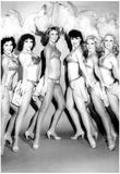 Viva-Variety Show Girls 1980 Archival Photo Poster Poster