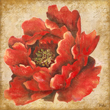 Red Peony on Gold Posters by Patricia Quintero-Pinto