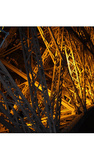 Paris France Eiffel Tower at Night 2 Photo Art Print Poster Masterprint