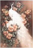 Peacocks & Peach (Floral) Art Print Poster Photo