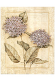 Purple Hydrangeas Art Print Poster Prints