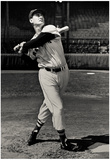 Ted Williams Swing Boston Red Sox Archival Photo Sports Poster Print Photo