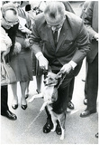 President Lyndon Johnson with Dog Archival Photo Poster Print Poster