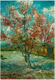 Vincent Van Gogh Pink Peach Trees Souvenir de Mauve Art Print Poster Posters by Vincent van Gogh