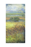 Shimmering Marsh II Reproduction proc&#233;d&#233; gicl&#233;e par H. Thomas