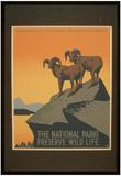 National Park Service (The National Parks Preserve Wild Life) Art Poster Print Photographie
