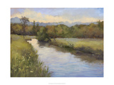 Camp Springs Farm Giclee Print by Mary Jean Weber