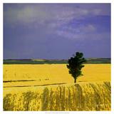 Farmscape I Arte por James Burghardt