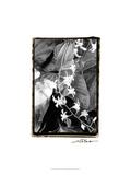 Floral Elegance I Prints by Laura Denardo