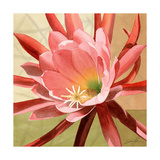 Desert Bloom I Giclee Print by Jason Higby