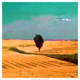 Farmscape II Poster di James Burghardt