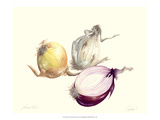 Onion Giclee Print by James Linton Sain