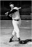 Ted Williams Swinging Bat Archival Photo Sports Poster Print Posters