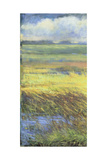 Shimmering Marsh I Giclee Print by H. Thomas