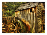 Water Wheel Prints by Danny Head