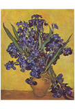 Vincent Van Gogh (Still Life with irises) Art Poster Print Photo
