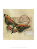 Le Papillon II Prints by Marianne D. Cuozzo