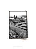 Palace of Versailles Garden II Prints by Laura Denardo
