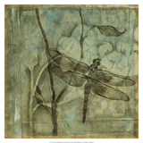 Non-Embellished Ethereal Wings II Premium Giclee Print by Jennifer Goldberger