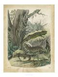 Nature's Gathering V Affiches par John Wiek