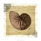La Vie en Mer VIII Prints