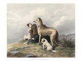Highland Dogs Giclee Print by Edward Landseer