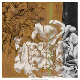 Bloom Illusion II Premium Giclee Print by Jennifer Goldberger
