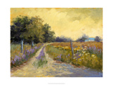 Fall's Golden Fields Stampa giclée premium di Mary Jean Weber