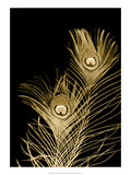 Plumes d'Or II Prints by Jason Johnson