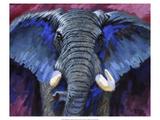 Bold Elephant I Giclee Print by Robert Tate